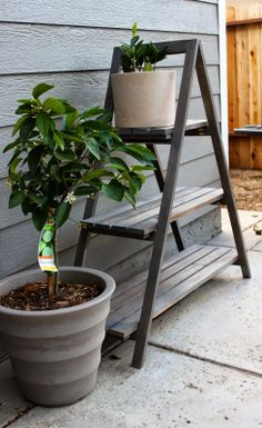 Chic Little House - DIY A Frame Plant Stand