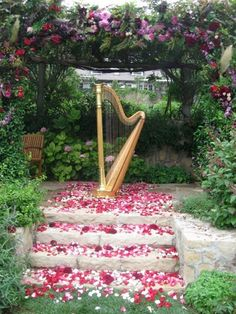 Ooh I'd love harp music at my wedding