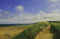 inverness beach | cape breton island | summer | jennifer picard photography | east coast beauty