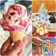 Blueberry Cheese Cake Ice Cream At OOPS Gelato.. #Ubud #Bali #Indonesia