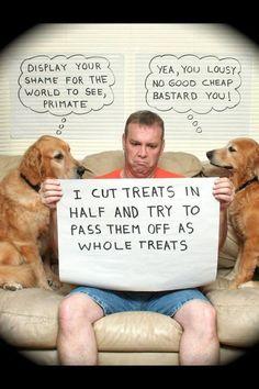 owner shaming