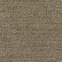 Lowe's Royalty Carpet Mills Active Family Halo Fashion Forward 2.78/sq ft