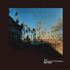 To Build A Home - The Cinematic Orchestra (Ma Fleur)