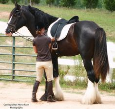 <3  For anyone who has not known the joy of riding a draft. its pretty amazing...
