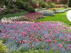 Flower display atButchart Gardens near Victoria BC