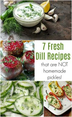 There are a ton of health benefits of dill and it is delicious for so many foods besides homemade pickles! Learn how to grow dill and get some fresh dill recipes to use it all up! Dill Recipes, Herb Recipes, Cooking Recipes, Veggie Recipes, Lunch Recipes, Spicy Pickles, Homemade Pickles, Fresh Dill, Fresh Herbs