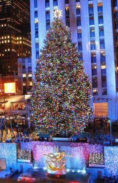 NYC Guide: Winter in NYC List - Elana Lyn