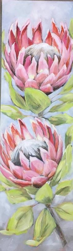 Pretty Proteas Protea Art, Protea Flower, Art Floral, Floral Drawing, Acrylic Flowers, Watercolor Flowers, Watercolor Art, Botanical Drawings, Botanical Art