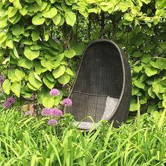 Vill också ha en hängande korgstol! Från Eronns trädgård i Ramlösa.