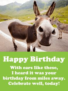 """I heard it's Your Birthday! Funny Birthday Card: Near or far, we always remember our friends. And when the familiar day of their birthday rolls around, our ears perk up and we start nosing around for the best gift to get. This year, send your friend a fabulous card featuring these rural donkeys. Fuzzy, warm, enduring, and yes stubborn they embody the friendships that last for years. You can't find a better """"Happy Birthday"""" messenger."""