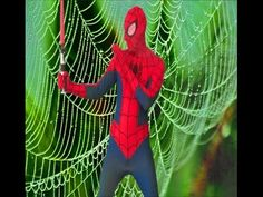 Spiderman in real life preparing for the fight,Sword fighting funny vide...