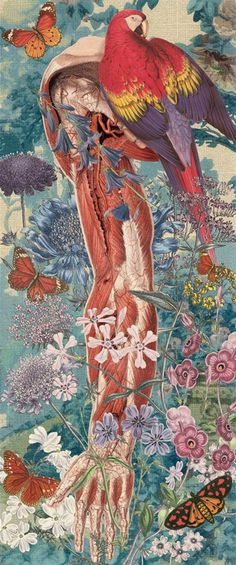 Juan Gatti, Ciencias naturales, S/T, Collage sobre lienzo, 142 x 55,5cm, 2011 ©