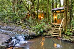Luxury Rainforest Spa & Stream Chalets - The Mouses House Rainforest Retreat Springbrook