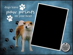 8x6 Akita Inu Pawprints Framed Photo Matte by SapphireCustomPhotos, $8.00