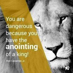 Leo King, Lion Quotes, Words Of Comfort, Lion Of Judah, Follow Jesus, Christianity, Reading, Savior, Jesus Christ