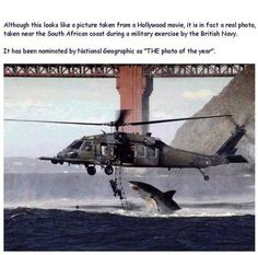 """Looks like Hollywood movie, but real.  Near South African coast during a military exercise by the British Navy.  Picture nominated by National Geographic as """"Picture of the year."""""""
