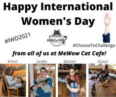 Happy International Women's Day ! #mewow #internationalwomensday #ChooseToChallenge #IWD2021 #catadoption #adoptdontshop #adoptacat #cat #cats #catsandcoffee #mewowcatcafe #lovecats #lifewithcats #catsarethebest #catsareawesome Instagram News, Happy International Women's Day, Cat Cafe, Ladies Day, Adoption, Cats, Foster Care Adoption, Gatos, Cat