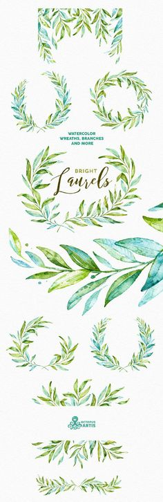 Laurels Bright. Watercolor wreaths branches. by OctopusArtis