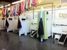 Lucky dawg pet grooming salon offers full service and self service home solutioingenieria Gallery