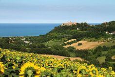 ---> http://www.hotelsinmarche.com/fermo/ <---  Torre di Palme: località incantevole del litorale fermano che si affaccia sul #mare ... #hotelsinmarche