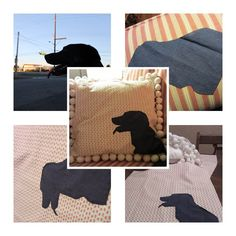 DIY Personalized Pillow for Pets