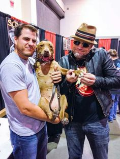 Lilly the hero pitbull with Michael Rooker