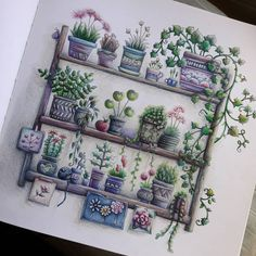 Joanna Basford, Colouring Pages, Colored Pencils, Gallery Wall, Goals, Photo And Video, Flowers, Fun, Art Floral