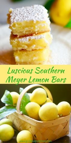 This Luscious Southern Meyer Lemon Bars recipe is fresh as summer and full of Vitamin C! This easy family-friendly lemon bar dessert recipe is with Meyer lemons! Top Recipes, Best Dessert Recipes, Delicious Desserts, Cooking Recipes, Healthy Lemon Desserts, Microwave Recipes, Cake Recipes, Breakfast Recipes, Dinner Recipes