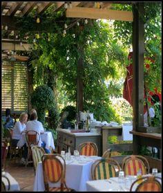 Bistro Don Giovanni A Great Restaurant In Napa Valley Sonoma County