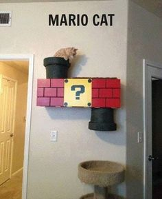 funny pictures of the day (64 pics) Mario Cat