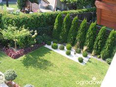 Ogród Tosi - strona 333 - Forum ogrodnicze - Ogrodowisko