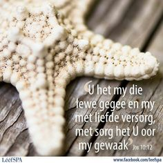 Lééf Goeie More, Afrikaans Quotes, Printable Quotes, Bible Verses, Things To Think About, Language, Inspirational Quotes, Faith, Lettering