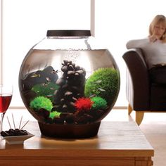 Fish & Aquariums Biorb Air Tool Set Ture 100% Guarantee