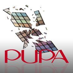 Still life - Pupa