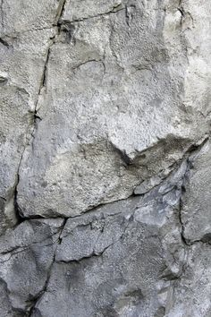 We provide faux rock (carved concrete) training videos and workshops to instruct artists and professionals. Hardscape and natural looking faux stones training is available. Cement Art, Concrete Art, Stone Texture, Natural Texture, Artificial Rocks, Nature Color Palette, Faux Stone, Wall Sculptures, Sculpting