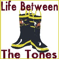 Life Between the Tones - blog written by a fire wife for fire wives, or those who may become a fire wife.
