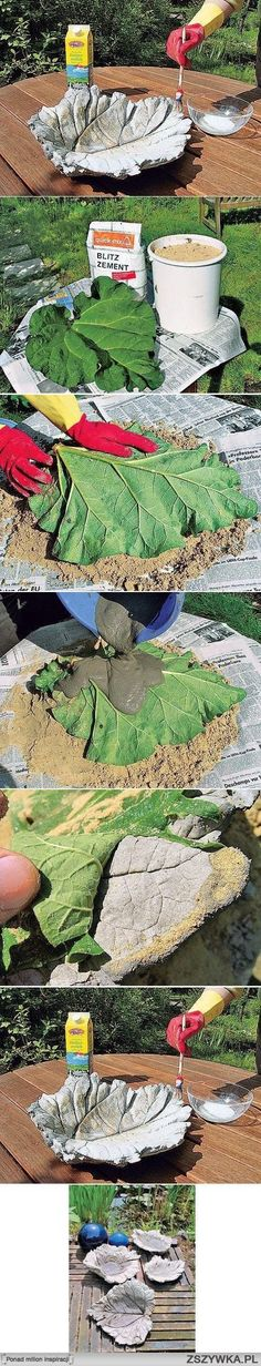 Cement garden dish - Made from Giant Sunflower leaves or big Pumpkin Leaves used as a base for Cement.