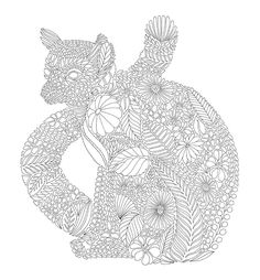 Tropical Wonderland Is Beautiful Adult Colouring Book By Millie Marotta With Divinely Crafted Creatures And Elaborate Line Drawings