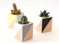 woody planter/frausieben