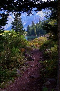 Hiking trail to a beautiful mountain lake near Aspen, Colorado. Photo and caption by Rick Cannon on Fine Art America