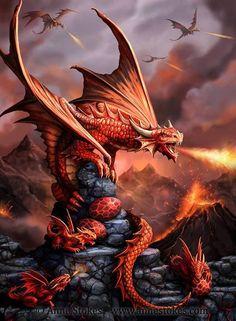 http://beautifulworld.ek.la/dragons-rouge-a126383222