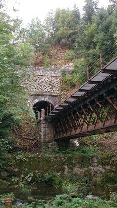Schwarzwaldbahn bij Schenkenzell, Duitsland.