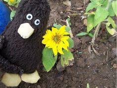 Erwin und eine Minisonnenblume.