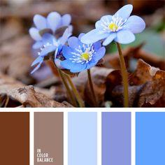 azul claro suave, celeste claro, cerúleo pastel, color flor de bosque, colores de la anemona, de color malva, elección del color, marrón y azul claro, marrón y violeta, tonos marrones, violeta suave, violeta y celeste.