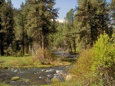 Oregon Malheur National Forest & John Day River