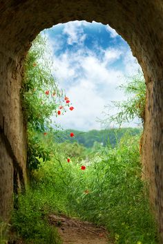 New hope at the end of the tunnel. Dark tunnel corridor with arch opening with green grass and flowers to a beautiful cloudy sky.