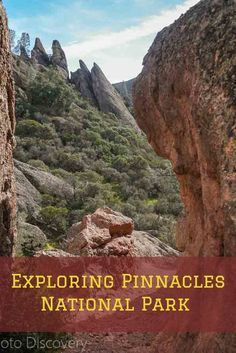 Exploring Pinnacles National Park - highlights of the parks hikes,scenic vista points, and popular attractions in the park. Check out the images and details of Pinnacles here : California National Parks, Us National Parks, California Camping, California Usa, Central California, Northern California, Best Places To Camp, Us Road Trip, Vacation Destinations