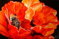 paintings of poppies   poppies is an original oil painting by m baldwin c2005 this painting ...