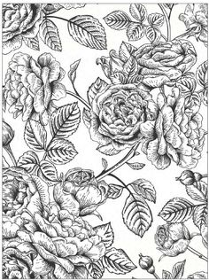 #ClippedOnIssuu from Beautiful Flowers Detailed Floral Designs Coloring Book…