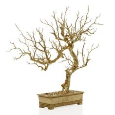 Small Stick Tree - Gold from Z Gallerie